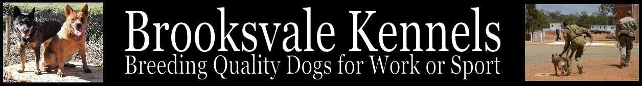 Brooksvale Kennels